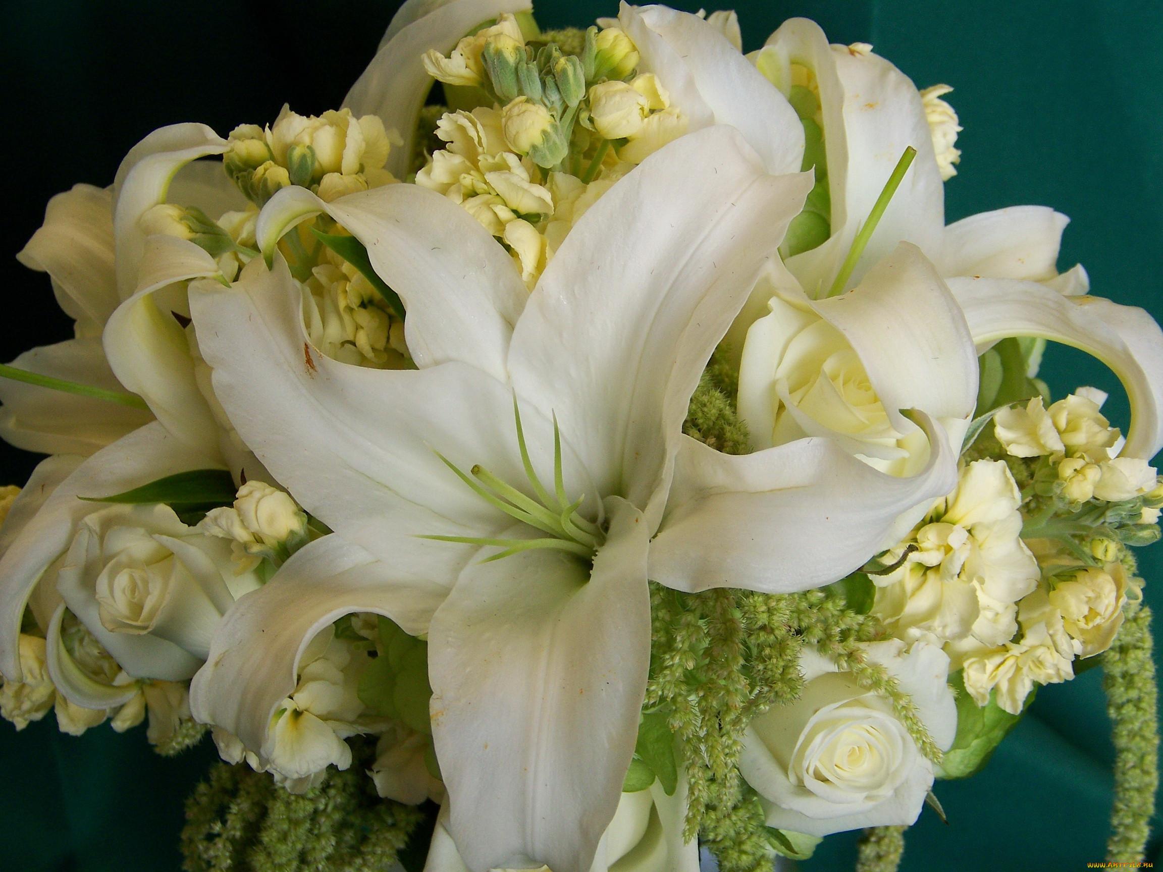 детали цветы лилии огромный букет картинки каталоге представлены предложения